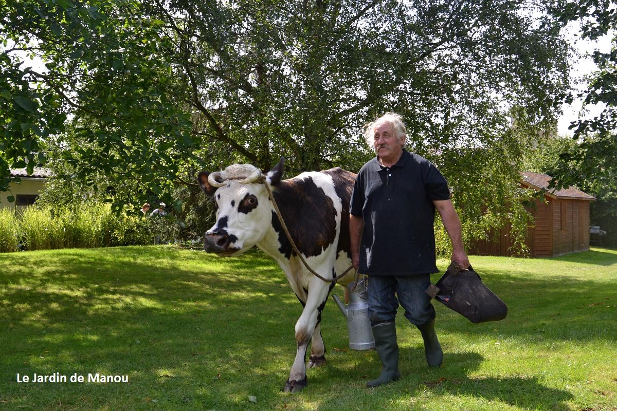 le fermier et sa vache